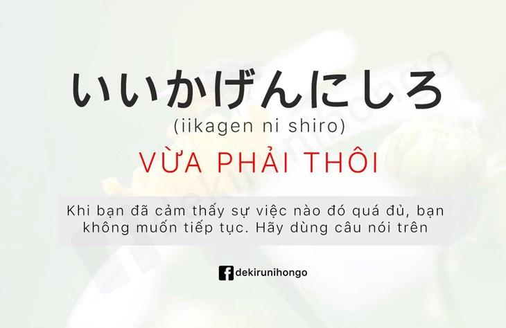 Những từ ngữ thường ngày trong tiếng Nhật - ảnh 4