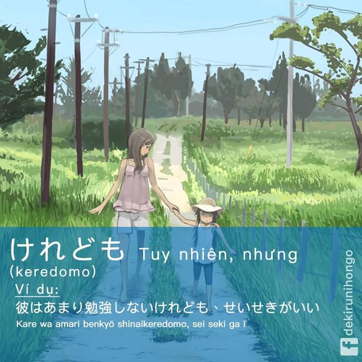 Từ nối câu trong giao tiếp tiếng Nhật - ảnh 2