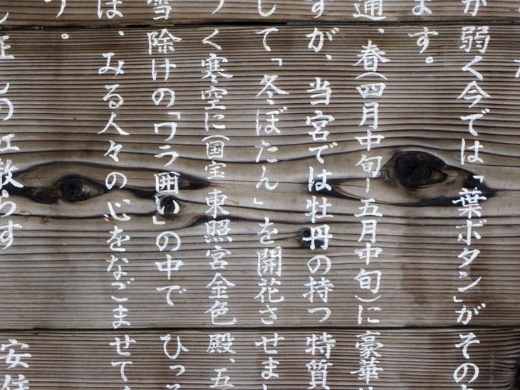 5 bí quyết cực hay giúp bạn học tốt tiếng Nhật - ảnh 2