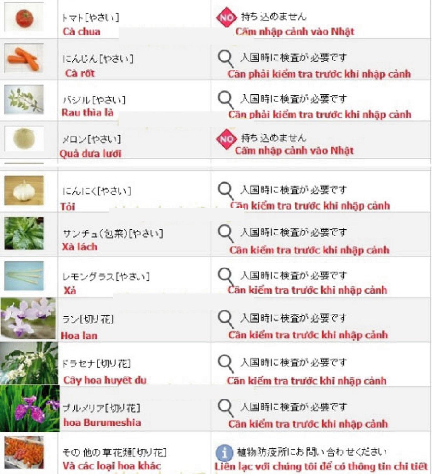 Thực phẩm nào bị cấm nhập cảnh vào Nhật Bản 9