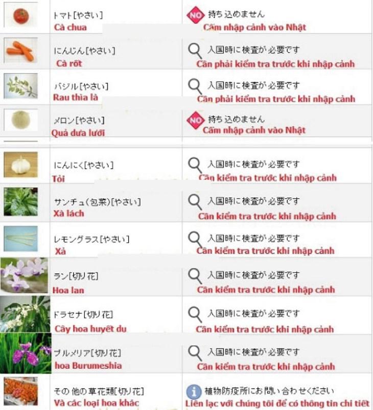 Thông tin chính xác nhất về các thực phẩm bị cấm nhập cảnh Nhật Bản - ảnh 8