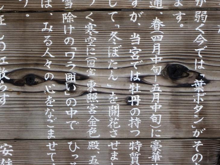 5 Sai lầm bạn cần chú ý khi học tiếng Nhật - ảnh 3