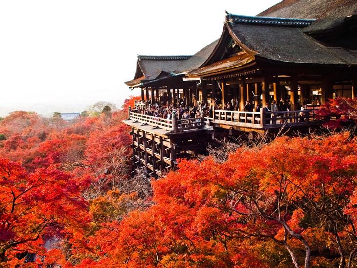 Việc bạn nên làm vào tháng 8 khi ở Nhật Bản - ảnh 1