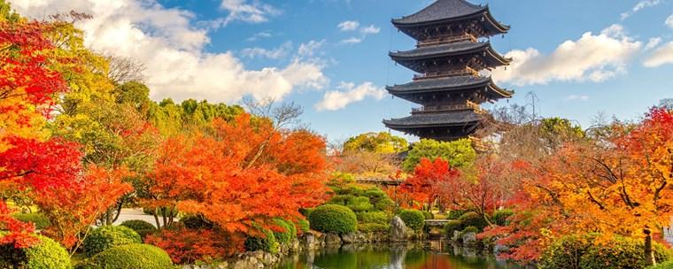 6 cách học tiếng Nhật hiệu quả, giúp bạn chinh phục tiếng Nhật dễ dàng